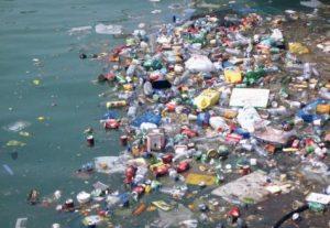 Siragu environment4
