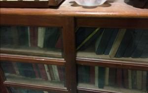siragu periyar books