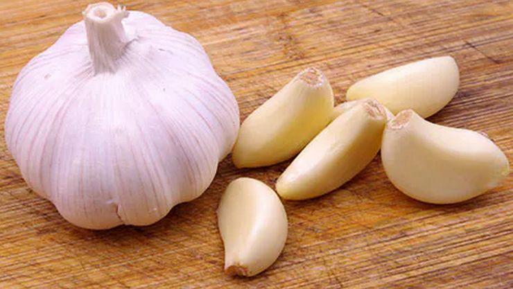 siragu garlic1