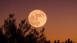 siragu moon